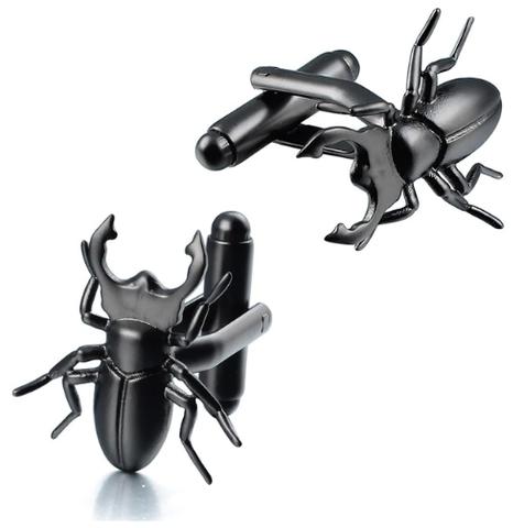 Cuckoo's Cufflinks Beetle, Lucanus cervus, entomologist
